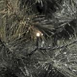 Lichterkette    Led    innen/        außen    20    Led`s    mit    Trafo
